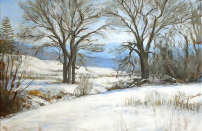 Brookwood Snow