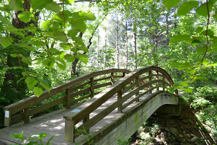 footbridge Botanical Gardens Asheville