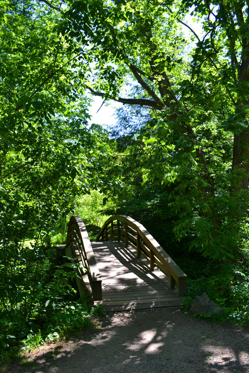 Bridge Botanical Gardens Asheville