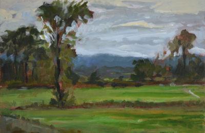 Brooding Sky – Mills River Park